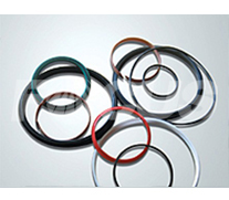 Main oil cylinder's sealing parts